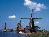 Romanii fara loc de munca ar putea fi nevoiti sa paraseasca Olanda