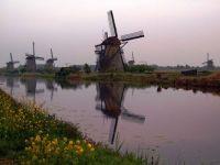 Olanda recunoaste ca are nevoie de 250.000 de muncitori imigranti. Romanii si bulgarii sunt inca pe lista neagra