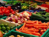 Chisinaul cere ajutoare pentru fermierii afectati de embargoul impus de Rusia. UE va sustine R. Moldova in aplicarea Acordului de Asociere, afirma noua sefa a diplomatiei europene