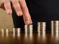 Firmele vor alege cum sa-si plateasca impozitul pe profit. Care sunt conditiile