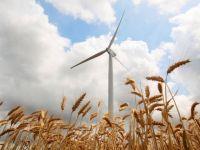 Guvernul acorda ajutor la energia regenerabila. Factura, mai mare cu 2,5% de anul viitor