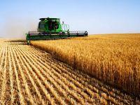 """BRD: """"In ciuda problemelor reale, agricultura va creste in continuare si cu ajutorul bancilor"""""""