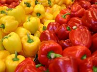 """Ministrul demis al Agriculturii: """"Doar 10% dintre legumele si fructele care se vand in pietele din Capitala sunt fiscalizate"""""""