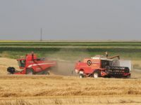 BRD acorda si in acest an credite fermierilor care beneficiaza de subventii pe suprafata