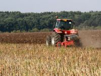 """Ministrul Agriculturii: """"Din 2014 vom limita cumpararea de terenuri de catre straini"""""""