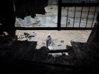 Israelul, posibila operatiune militara impotriva Gaza