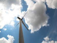 O compania eoliana din SUA, amendata cu 1 mil. dolari pentru moartea unor pasari