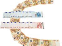 """Bancheri si politicieni din Europa de Est cauta solutii pentru iesirea din criza la Viena. """"Ar fi periculos sa ne bazam pe revenirea zonei euro"""""""