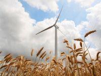 Energia verde ne arde la buzunare. Certificatele verzi vor dubla factura la curent, pana in 2020