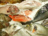 Turismul culinar, atractia litoralului romanesc. Proiectul ambitios al autoritatilor