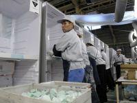 Bunastarea nord-coreenilor se masoara in numarul de frigidere pe cap de locuitor. Pentru ce le folosesc, in lipsa curentului electric