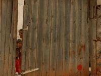 Nivelul foametei continua sa scada in lume. Africa, cea mai afectata