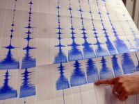 Directorul Institutului National pentru Fizica Pamantului:  Ne putem astepta la un cutremur mare din Vrancea, nu din Galati