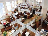 Piata muncii ramane inghetata in 2014. Doar 11% dintre firme estimeaza noi angajari, restul isi mentin personalul
