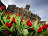 Coalitia guvernamentala din Olanda vrea limitarea accesului imigrantilor la indemnizatii sociale