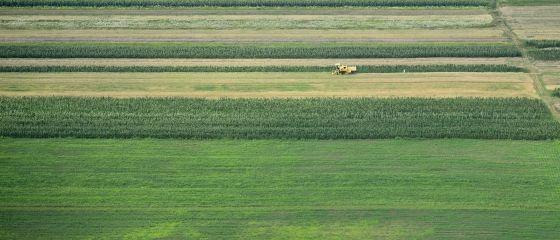 Dupa prabusirea imobiliarelor, agentii au gasit o noua afacere profitabila: comasarea terenurilor. Loturile compacte de pamant, de 4 ori mai scumpe ca cele faramitate