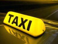 Taxiuri de nisa. Animalele de companie si copiii, surse profitabile pentru companiile de transport