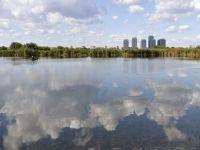 Delta din mijlocul Bucurestiului. Consilierii generali a avizat transformarea zonei din jurul Lacului Vacaresti in Parc Natural
