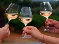 Romania, al 12-lea cel mai mare producator de vin la nivel mondial, desi cantitatea a scazut cu 20%, din cauza conditiilor meteo nefavorabile