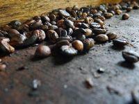 Cum se naste cel mai mare producator de cafea din lume. Doi giganti din retail fuzioneaza