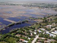 Agricultorii care au avut pagube anul trecut, din cauza calamitatilor naturale, ar putea fi scutiti de impozit