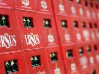 Ursus Breweries a inchiriat 9.300 mp in parcul logistic Log Center Timisoara, detinut de Immofinanz