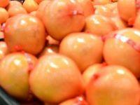 Principalul furnizor de fructe si legume al lanturilor de hipermarketuri a facut evaziune de 24 mil.euro. Cum a fost fraudat statul cu binecuvantarea ANAF
