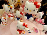 Japonia a trimis in spatiu o papusa Hello Kitty. Este incercarea guvernului de a promova imaginea industriei high-tech si a stimula cresterea economica a tarii