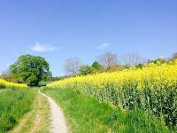 Fermierii români vor putea cumpăra mai ușor terenuri, în defavoarea străinilor. Zona în care un hectar se vinde și cu 60.000 de euro