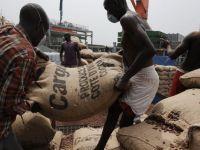 Nestle, in alerta maxima din cauza Ebola. Pretul pentru cacao creste din cauza temerilor ca boala ar ajunge si in Coasta de Fildes