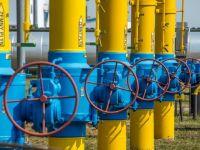 Ungaria a reluat livrarile de gaze naturale catre Ucraina, dupa ce le suspendase in septembrie, la presiunile Moscovei
