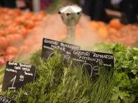 WWF: Niciun mare retailer din Romania nu vinde fructe si legume ecologice autohtone. Sustinerea acestor produse ramane la nivel declarativ