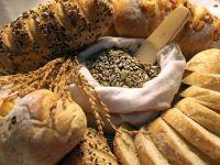 Rezerva de alimente a statului, in caz de calamitati, aproape inexistenta. Cu ce-si va hrani Romania poluatia in caz de cutremur devastator, epidemie sau atacuri teroriste