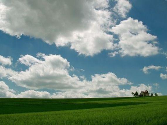 Southern Harvest a mai achizitionat 2.700 de hectare de teren agricol in Romania