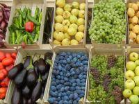 Marii retaileri au redus preturile la produse alimentare cu 12,8%, dupa reducerea TVA. Cu cat au scazut in magazinele traditionale