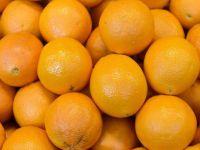 Pretul sucului de portocale, in crestere. Recolta din Florida va cobori la cel mai scazut nivel din ultimii 52 de ani