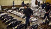 Celebra hala Tsukiji, regatul tonului rosu, isi inchide portile pentru a-si schimba locatia. Cum vad aceasta miscare oamenii de afaceri care platesc si 1 milion euro pentru un peste