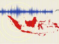 Cutremur cu magnitudinea de 7,9 in Indonezia. Autoritatile au emis alerta de tsunami