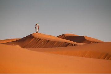 De la constructii, la smartphone si pasta de dinti, nisipul este cea mai folosita resursa, dupa apa. Statul din inima desertului, ridicat cu nisip importat