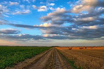 Preţul terenului agricol din România a ajuns la nivelul celui din vestul Europei
