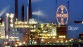 Nemtii de la Bayer preiau Monsanto, pentru 66 mld. dolari, generand cel mai mare furnizor mondial de seminte modificate genetic si erbicide