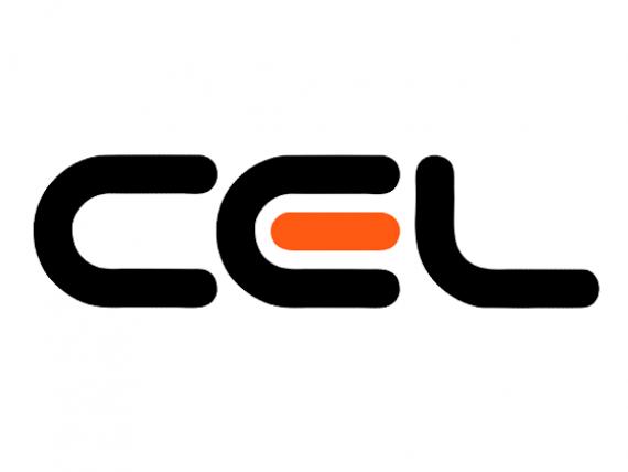 Retailerul online CEL.ro intra pe piata asigurarilor RCA
