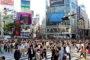 Plan pentru extinderea primirii de lucrători străini în țara în care se moare de suprasolicitare