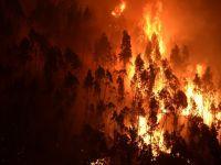 Peste 10.000 de persoane, evacuate in timpul noptii din cauza incendiilor de vegetatie din Corsica si sudul Frantei