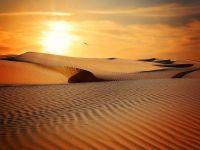 Un val de caldura sahariana va lovi Europa de Est in lunile iulie si august. Avertismentul psihologilor
