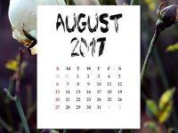 Inca o zi libera pentru bugetari, in august