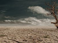 Stoparea incalzirii globale, o utopie. Studiu: Exista doar 5% sanse ca avansul temperaturii sa fie limitat cu 2 deg;C, asa cum prevede Acordul de la Paris