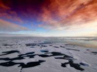 Raport oficial SUA: Temperatura globală a depășit recorduri în ultimii doi ani. Schimbarea climatică, cea mai mare provocare pentru omenire și viața pe Pământ