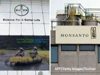 Comisia Europeană investighează preluarea Monsanto de către Bayer, care ar genera cel mai mare grup din sectorul mondial al pesticidelor şi semniţelor