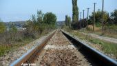 Ministrul Transporturilor: În fiecare an se strică peste 300 km de cale ferată şi se repară 16 km. De ce nu pot interveni cei 23.000 de angajați pe care îi are CFR SA